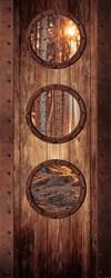 Дверь с окошками