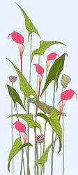 Наклейки Изящные лилии