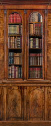 Наклейки Книжный шкаф