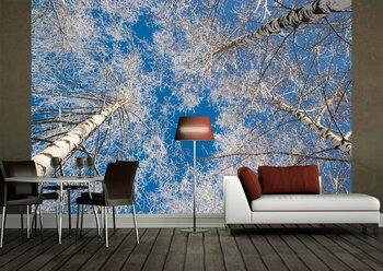 Фотообои Winter-28020913