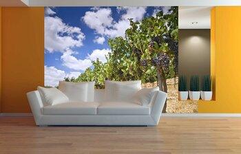 Фотообои на стену photo-27110922