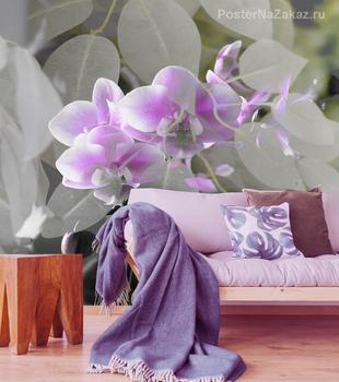 Фотообои Цветущая орхидея