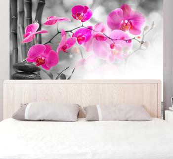 Фотообои Монохромные орхидеи
