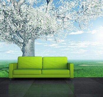 Фотообои Красивое цветущее дерево
