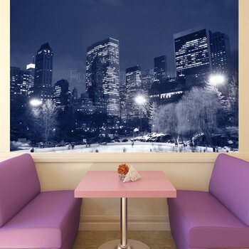 Фотообои Центральный парк в Нью-Йорке